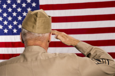 A Salute to the Military on Veteran's Day.